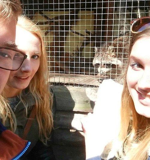 Studenten auf einem Bild mit einem Tier